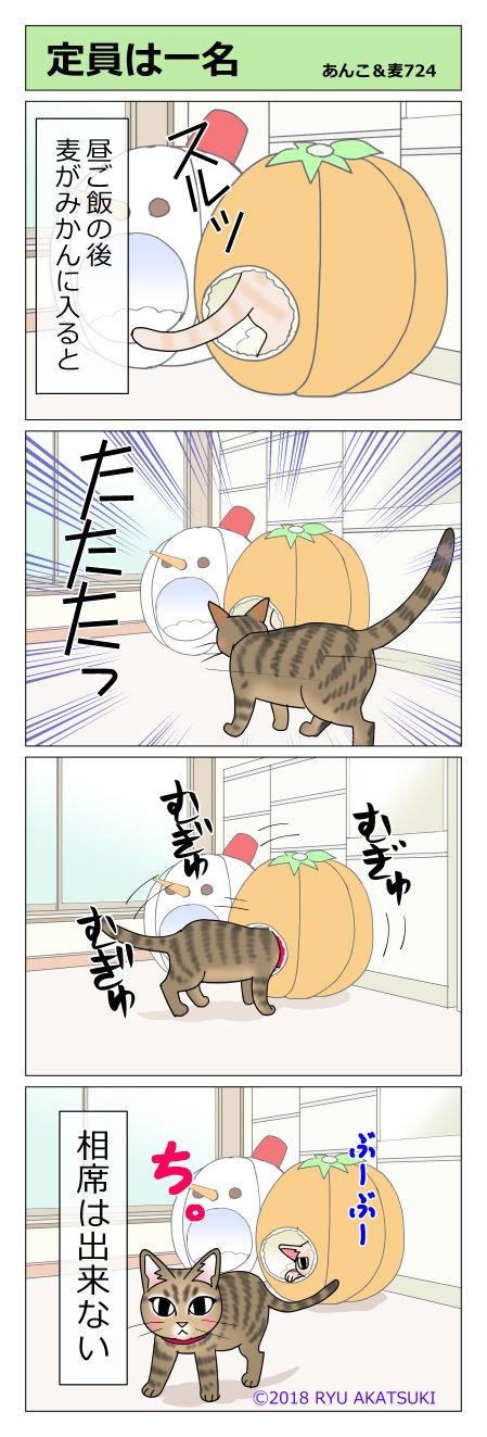 あんこ&麦STORY724