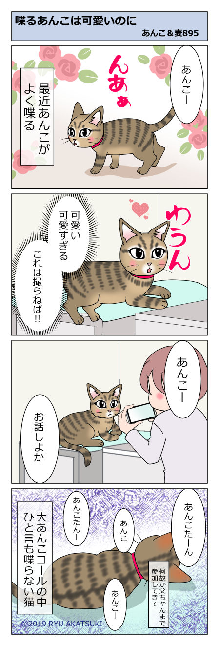 あんこ&麦STORY895