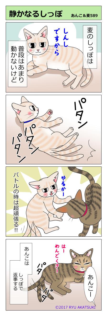 あんこ&麦STORY589