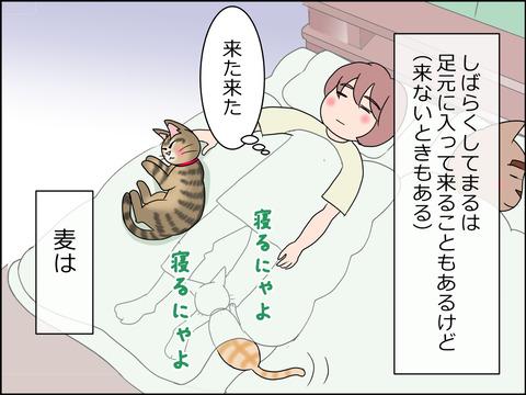 あんこ&麦STORY1435c