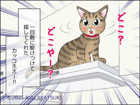 あんこ&麦STORY1436d