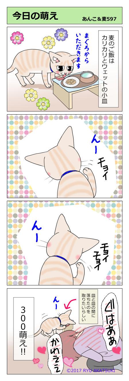 あんこ&麦STORY597