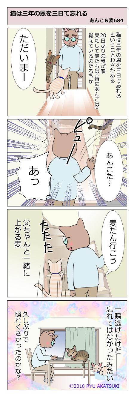 あんこ&麦STORY684