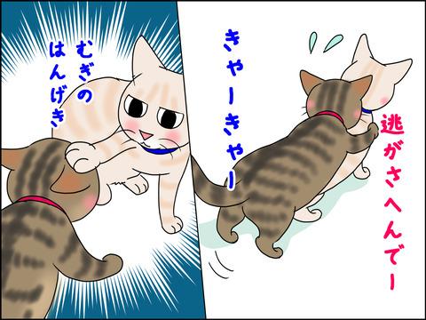 あんこ&麦STORY1442c