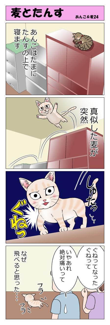 あんこ&麦STORY24