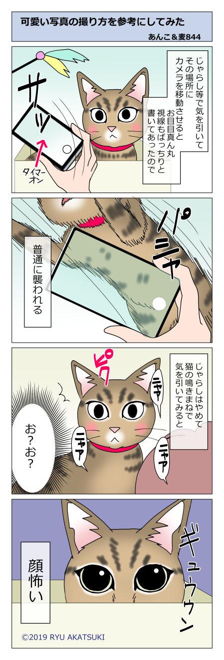 あんこ&麦STORY844