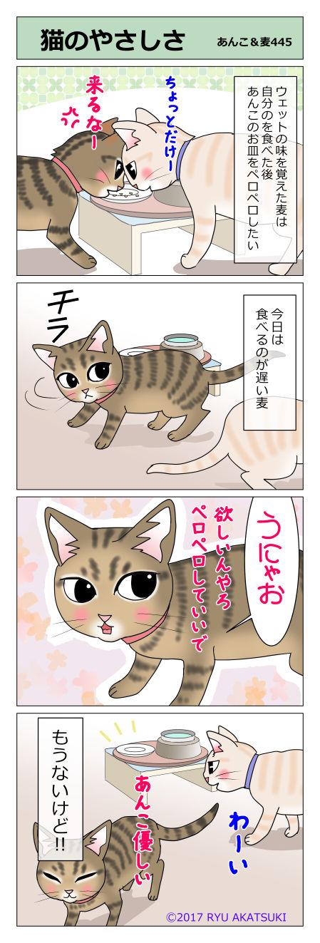 あんこ&麦STORY445
