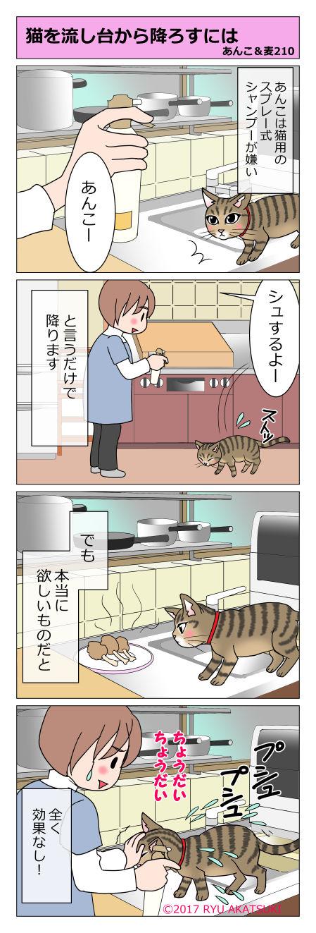 あんこ&麦STORY210