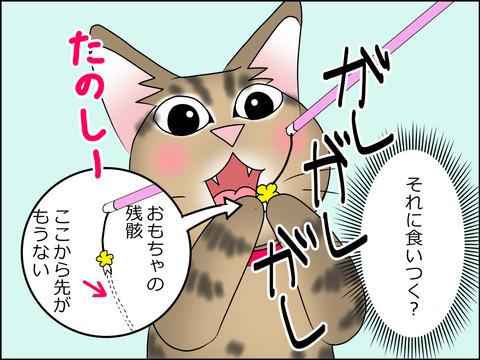 あんこ&麦STORY1456c