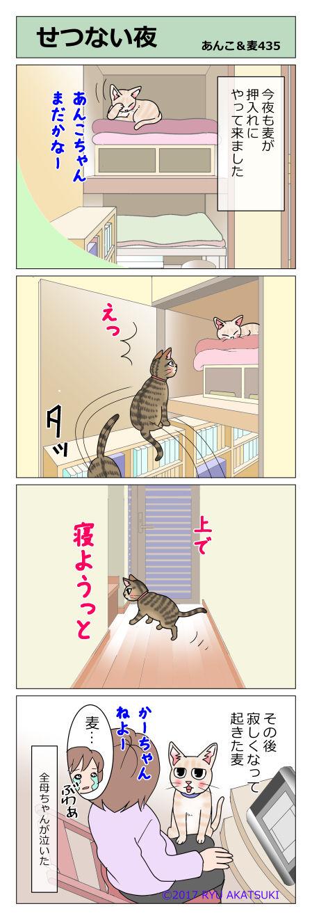 あんこ&麦STORY435