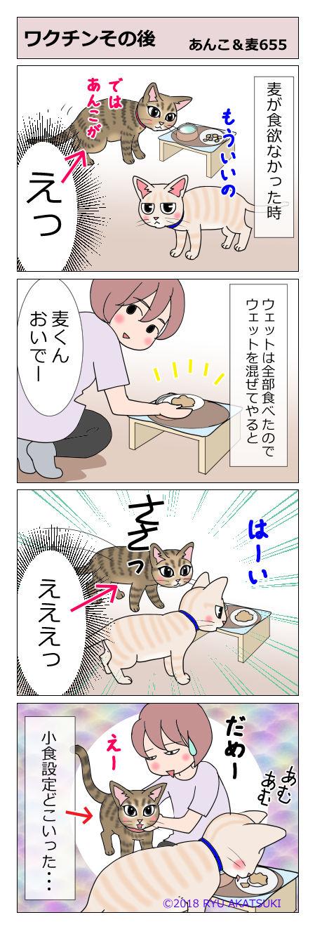 あんこ&麦STORY655