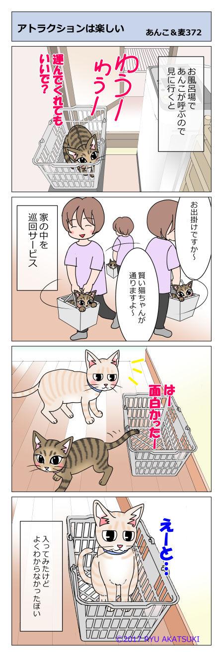あんこ&麦STORY372