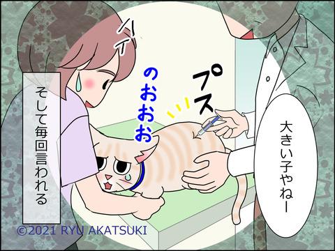 あんこ&麦STORY1450d
