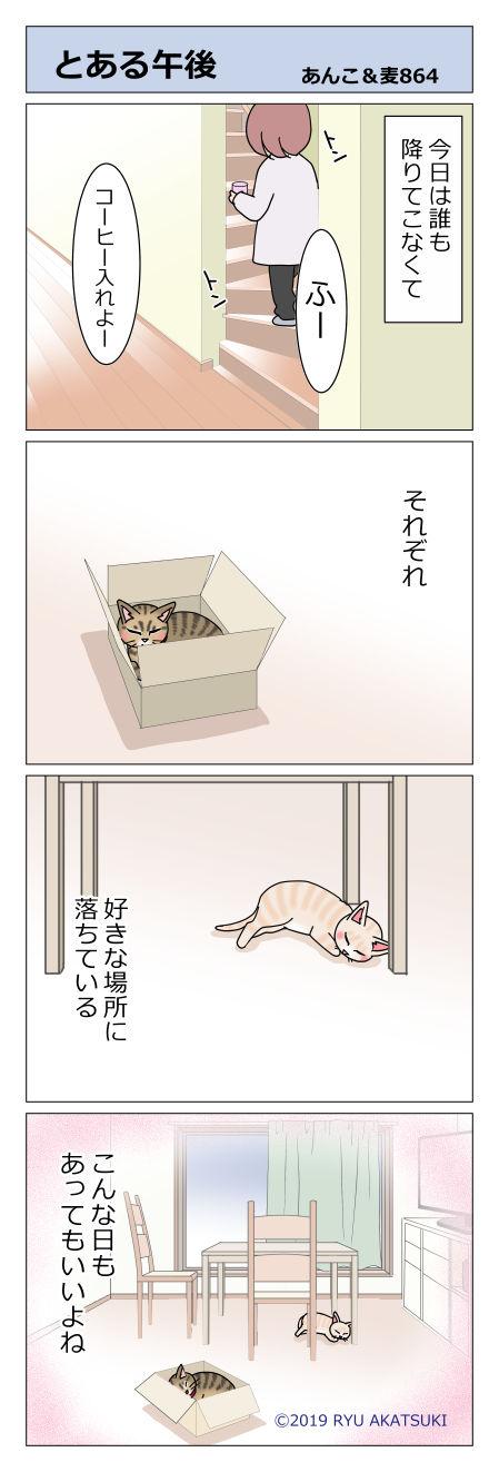 あんこ&麦STORY864