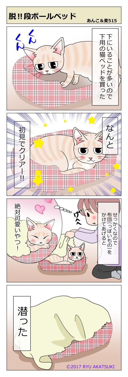 あんこ&麦STORY515