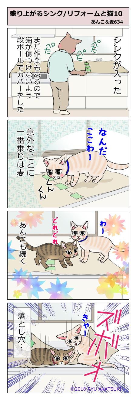 あんこ&麦STORY634