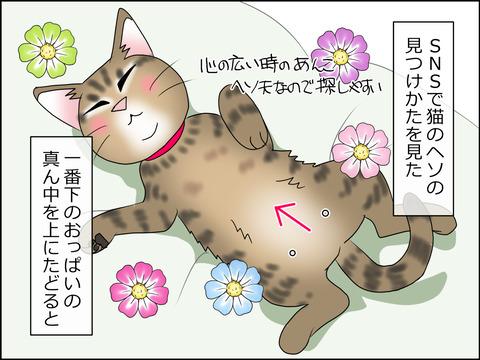 あんこ&麦STORY1431a