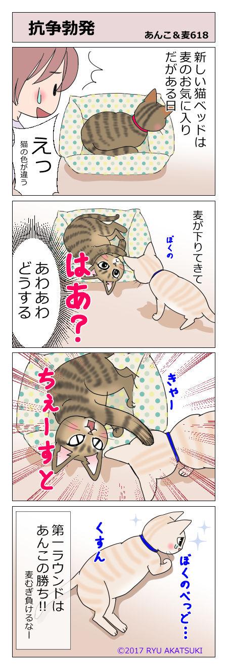 あんこ&麦STORY618