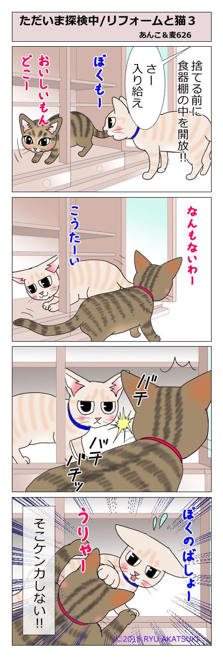 あんこ&麦STORY626