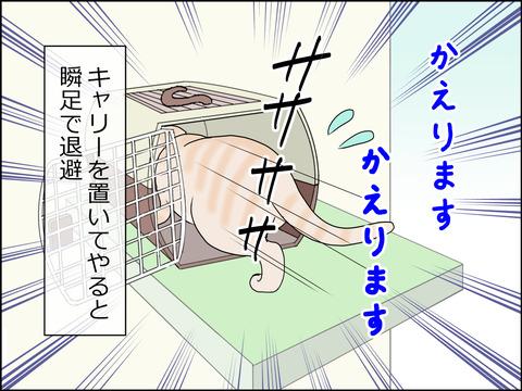 あんこ&麦kenko24c