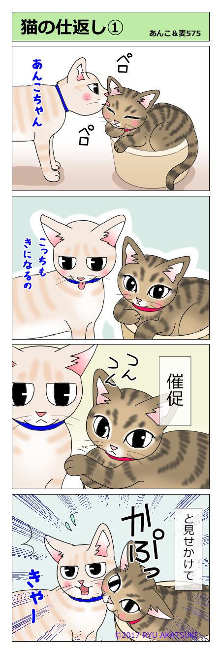 あんこ&麦STORY575