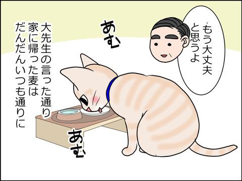 あんこ&麦kenko32a