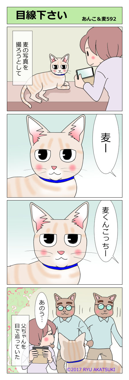 あんこ&麦STORY592
