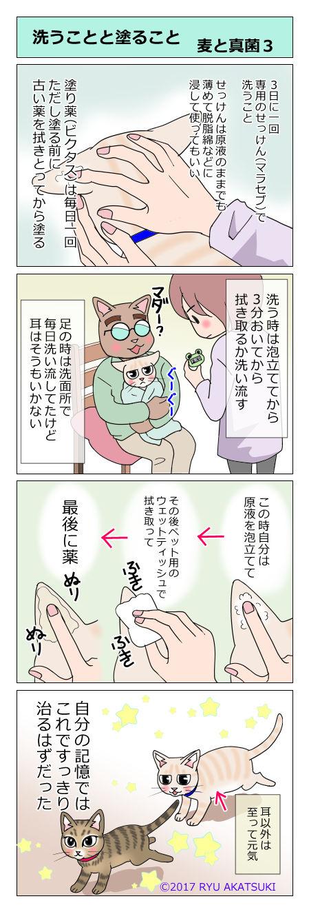 あんこ&麦kenko19