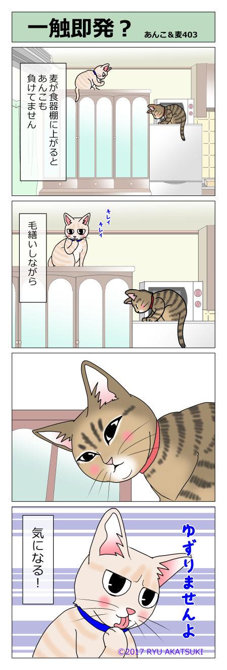 あんこ&麦STORY403