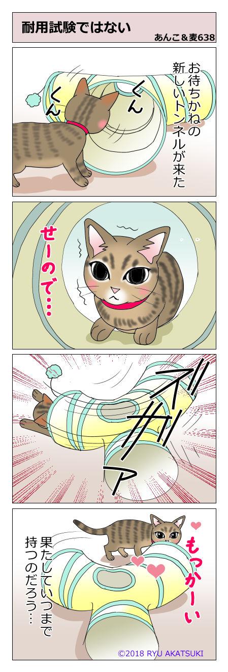 あんこ&麦STORY638