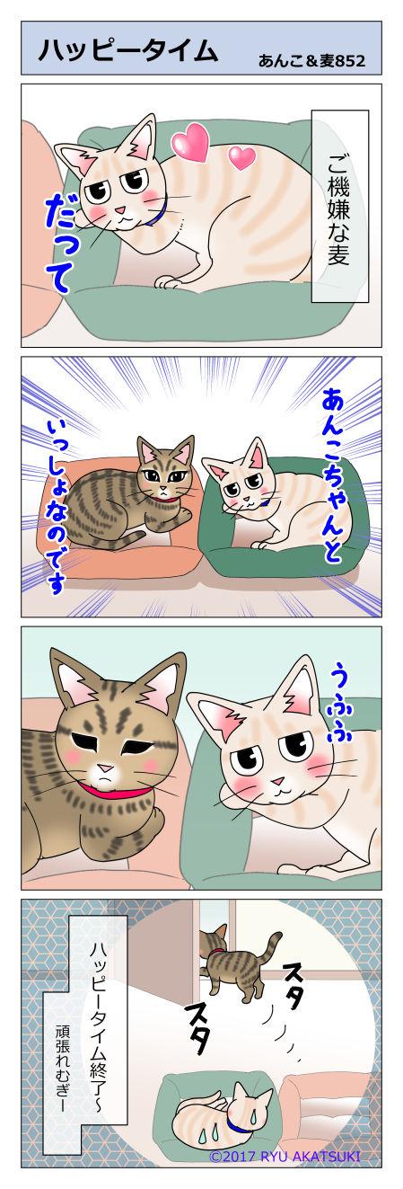 あんこ&麦STORY852
