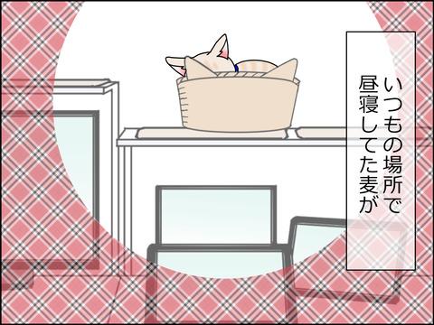 あんこ&麦STORY1446a