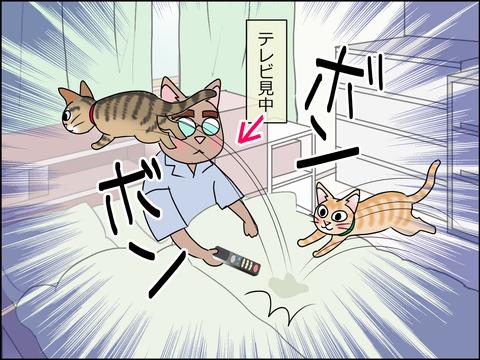 あんこ&麦STORY1443b