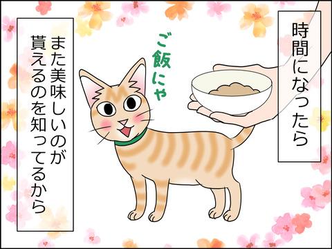あんこ&麦STORY1449d