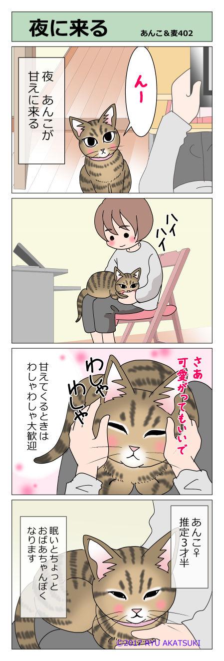 あんこ&麦STORY402