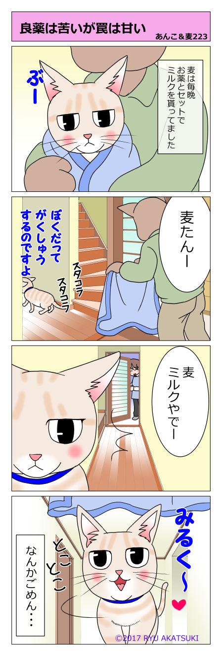 あんこ&麦STORY223