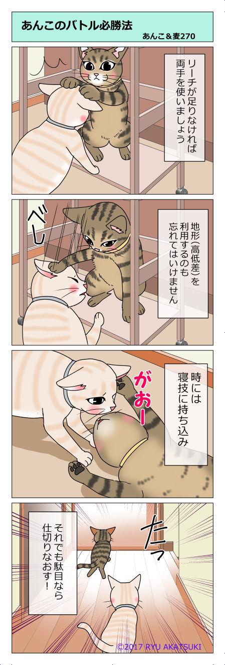 あんこ&麦STORY270