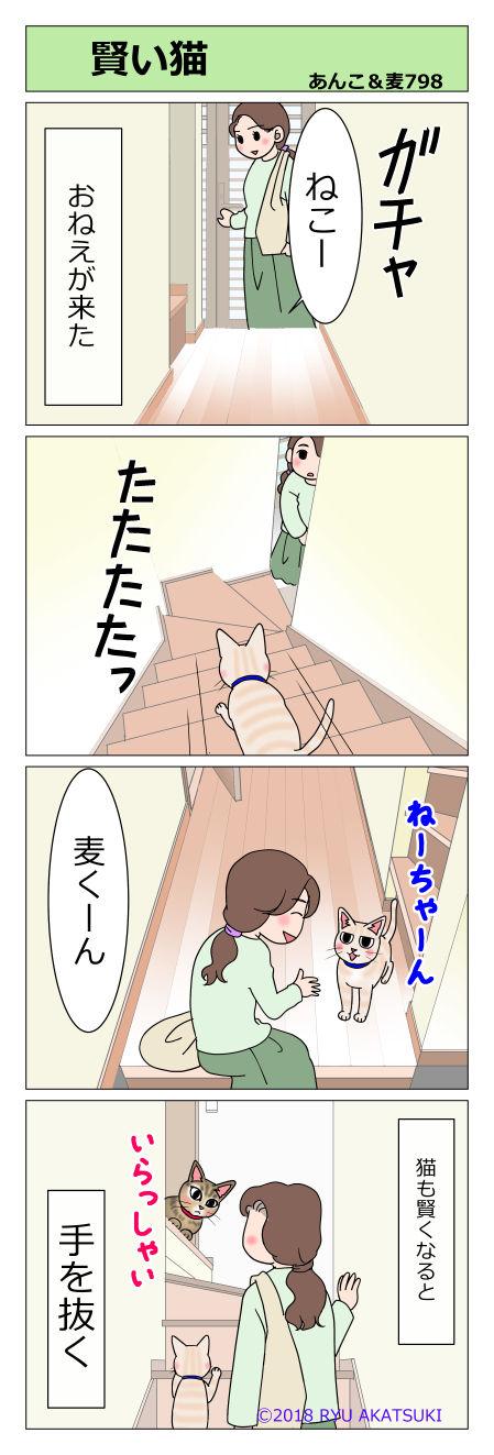 あんこ&麦STORY798