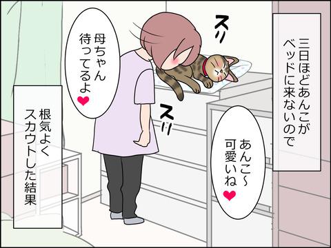 あんこ&麦STORY1439a