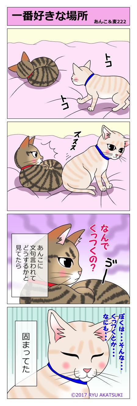 あんこ&麦STORY222