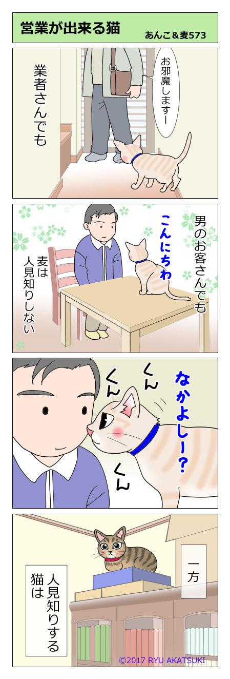 あんこ&麦STORY573