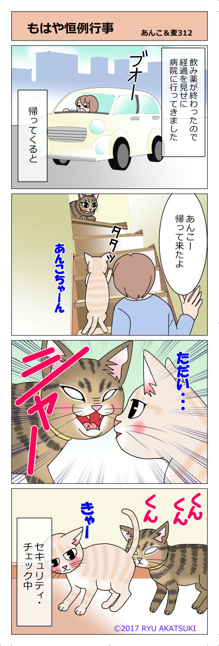 あんこ&麦STORY312