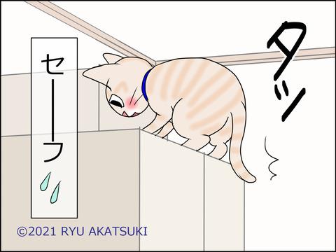 あんこ&麦STORY1458d