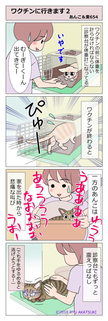 あんこ&麦STORY654