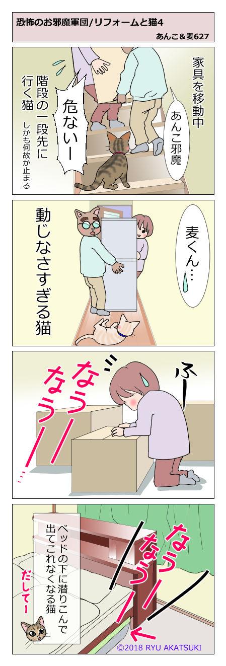 あんこ&麦STORY627