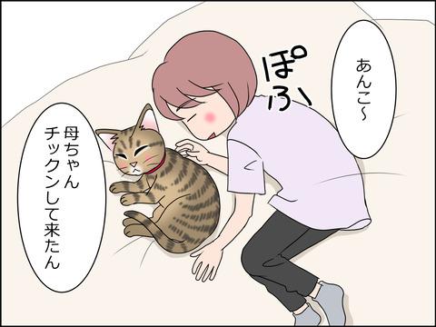 あんこ&麦STORY1434b