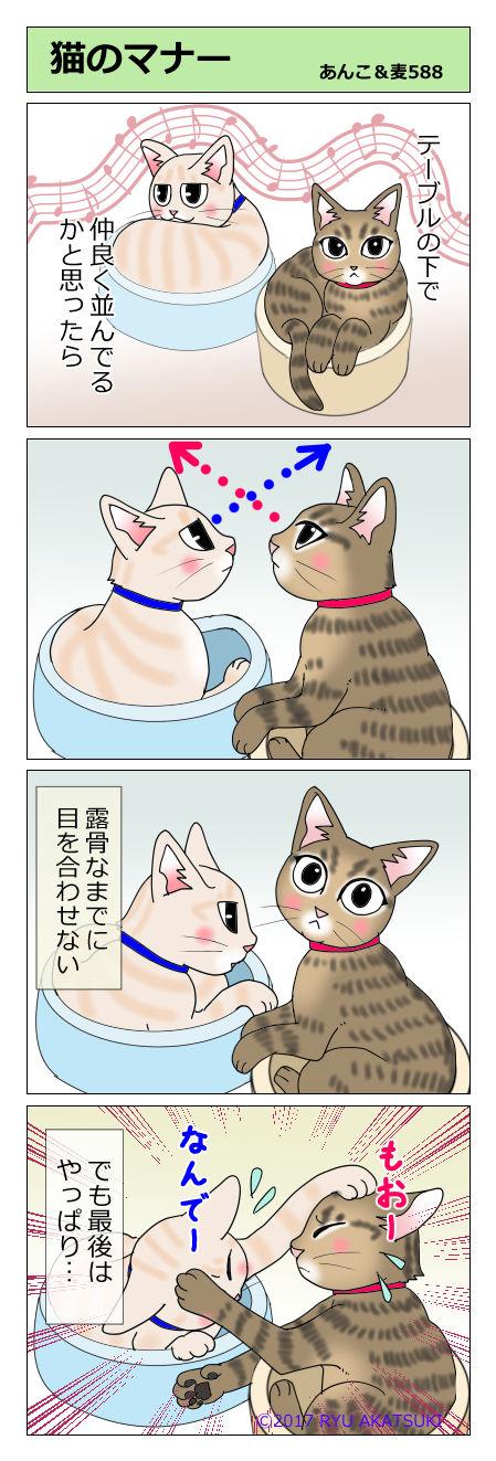 あんこ&麦STORY588