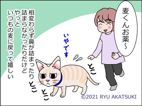 あんこ&麦kenko32d
