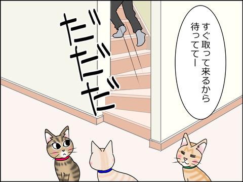 あんこ&麦STORY1440b