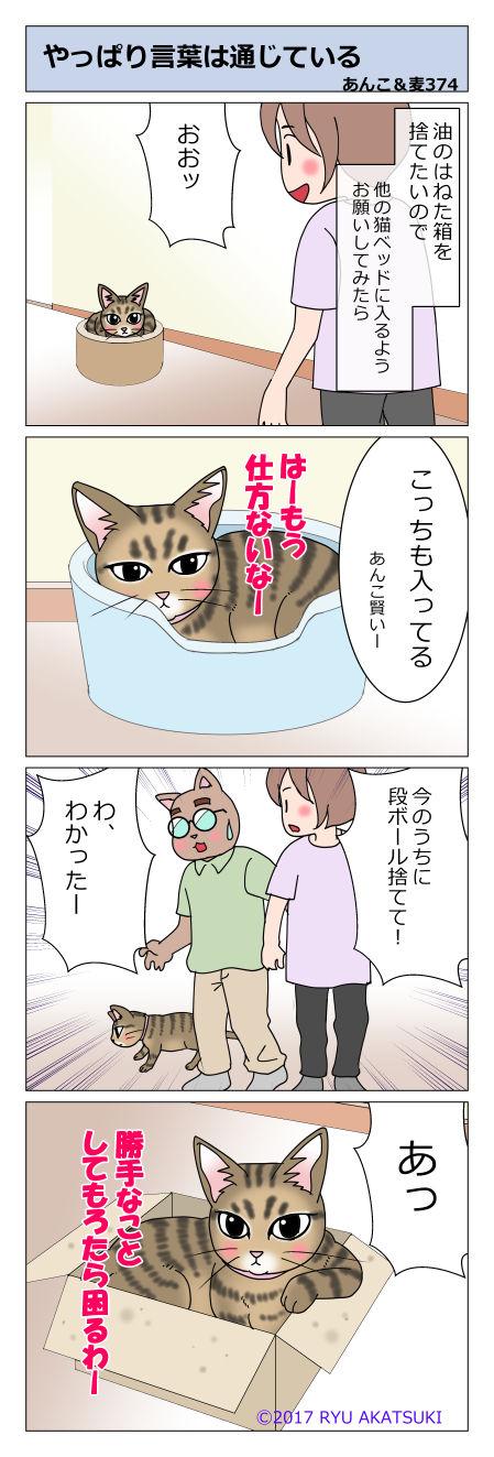 あんこ&麦STORY374